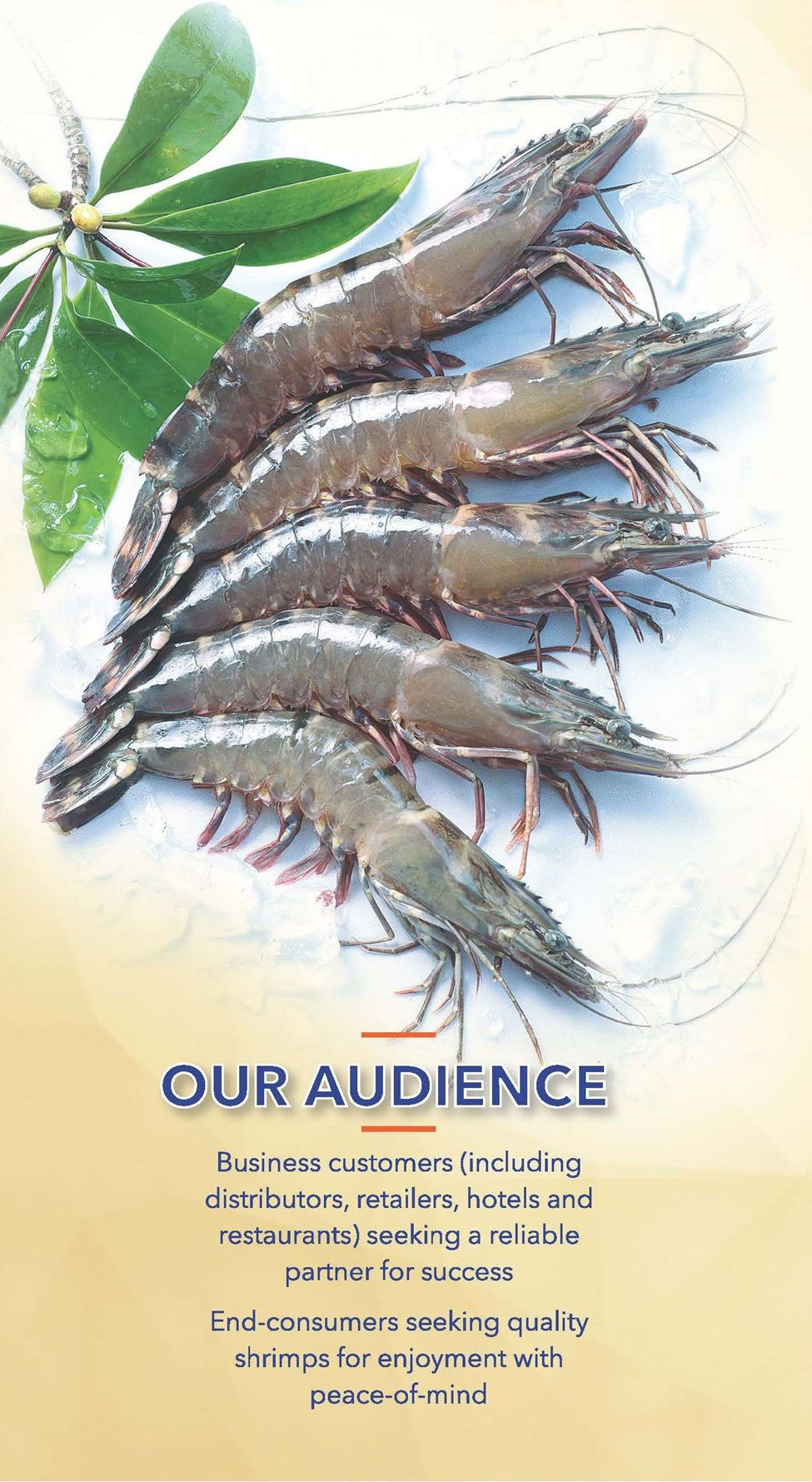 Our Audience Minh Phu Eden Shrimps